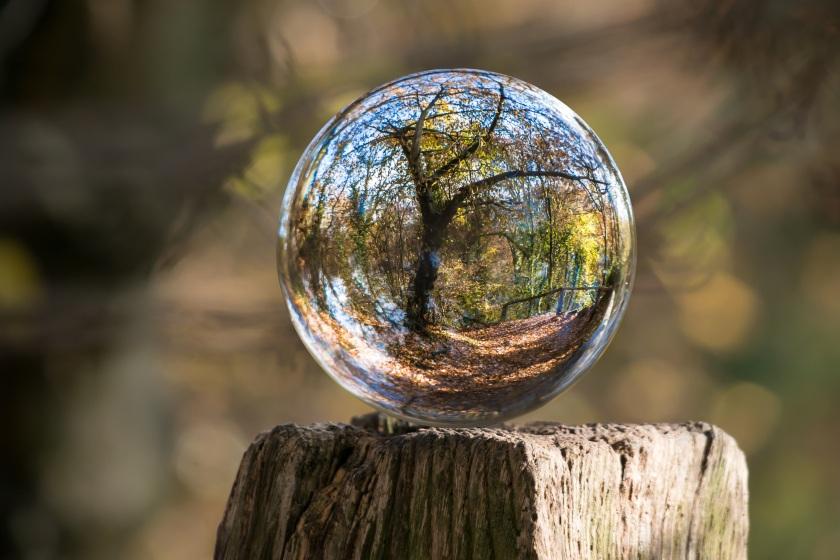 bubbleLandscape