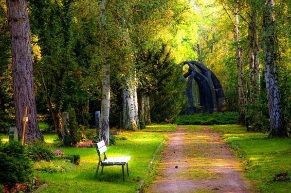 forestPathwayWithChairNTombstones