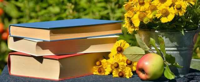 BooksDaisy